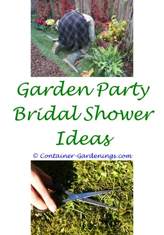 Easy Container Garden Ideas   Sustainable gardening, Garden ideas ...