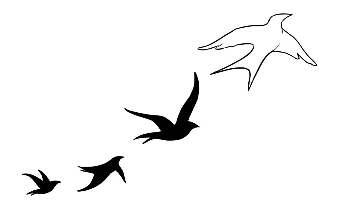 How to Draw a Bird - Tribal Swallow Tattoo Design Style ... |Flying Birds Drawing Tattoo