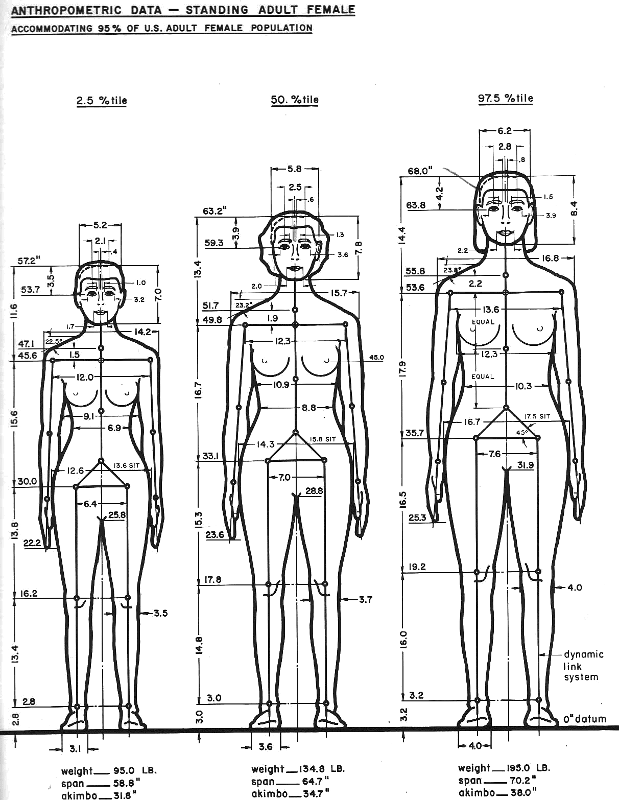 Data Stature 1212 1566 A 1 0 Human Body