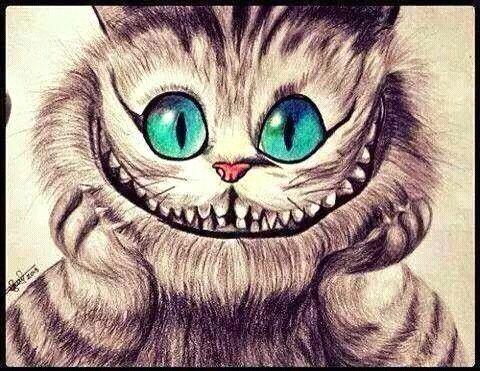 Cat Alice In Wonderland Alice Im Wunderland Katze Grinsekatze