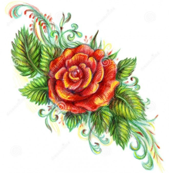 45 Beautiful Flower Drawings And Realistic Color Pencil Drawings Beautiful Flower Drawings Roses Drawing Flower Drawing