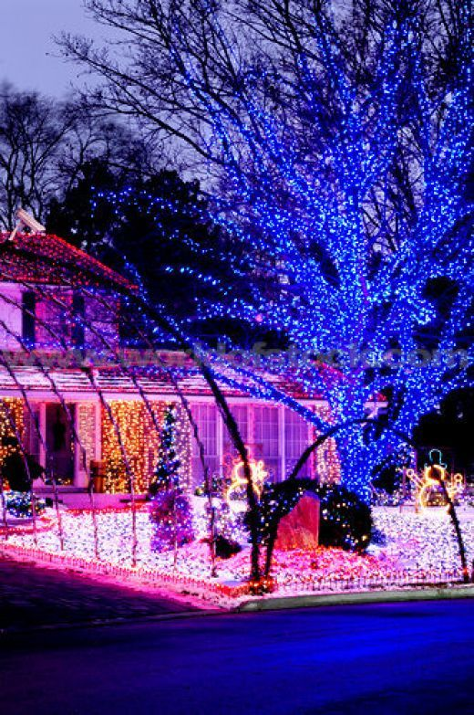 Blue Pink Red Purple White Outdoor Christmas Light Display