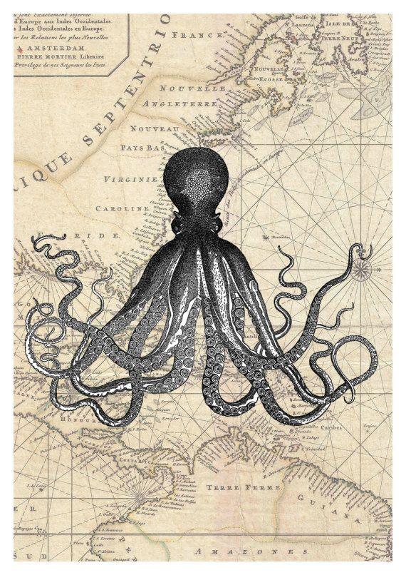 Vintage Frame Large Preserved Octopus Blue Velvet