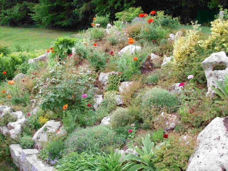 Gestaltung eines natürlich wirkenden Steingartens ガーデン