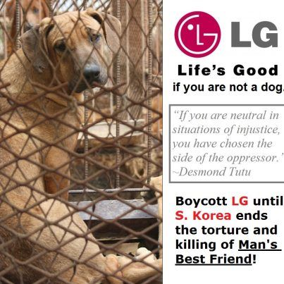 To the management of LG,  Today anther 5,000 plus dogs have been brutally slaughtered in your country of S. Korea! They were beaten, hanged, electrocuted and thrown into boiling water some while they are still alive. - Boycott LG until we see a change!!!