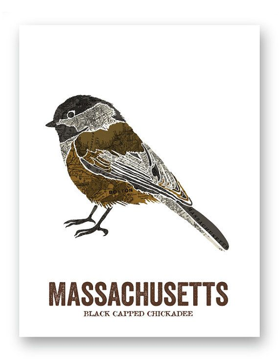 Massachusetts State Bird Nature Art Outdoor Art By Woodenpencilco