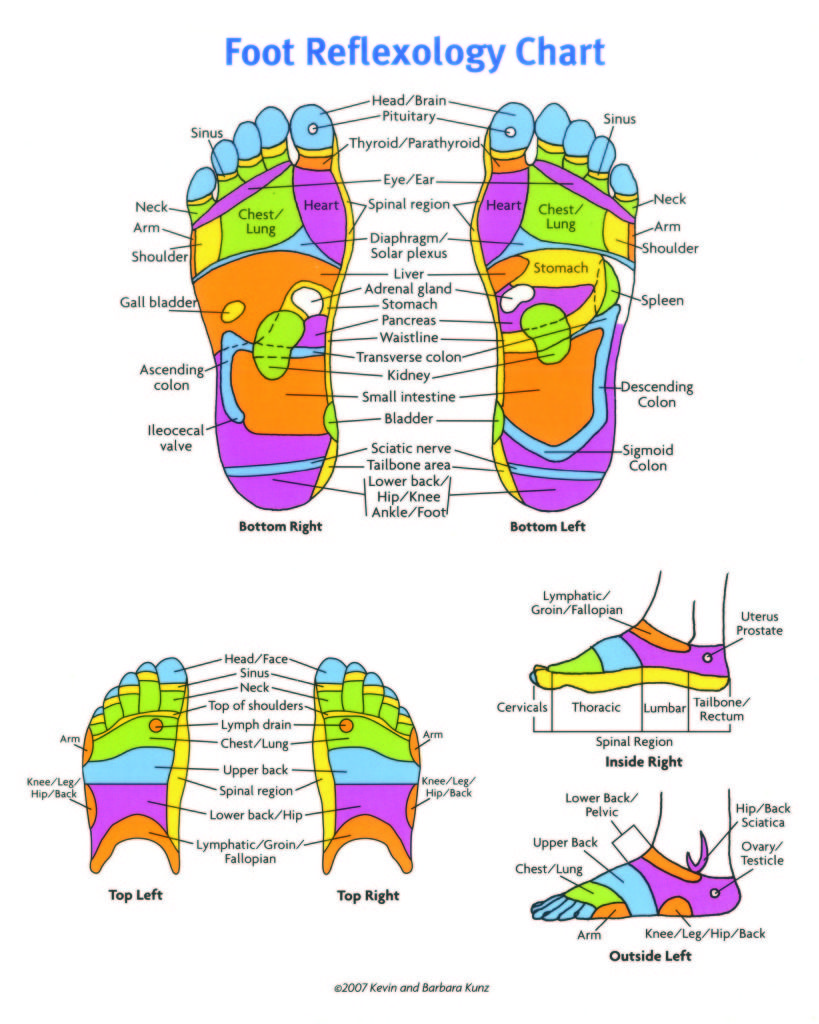 Reflexology Chart Foot Reflexology Chart Hand Reflexology Chart
