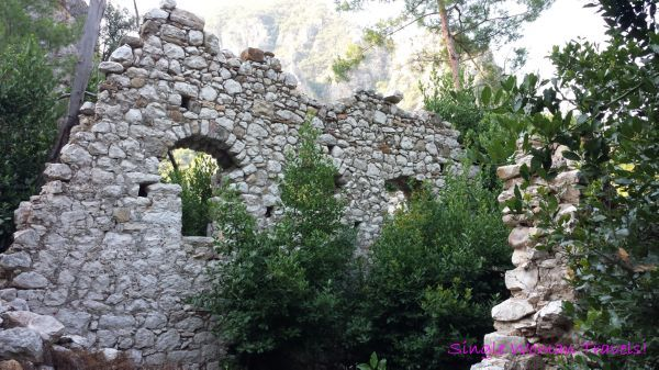 ruins taken over by nature - Google Search