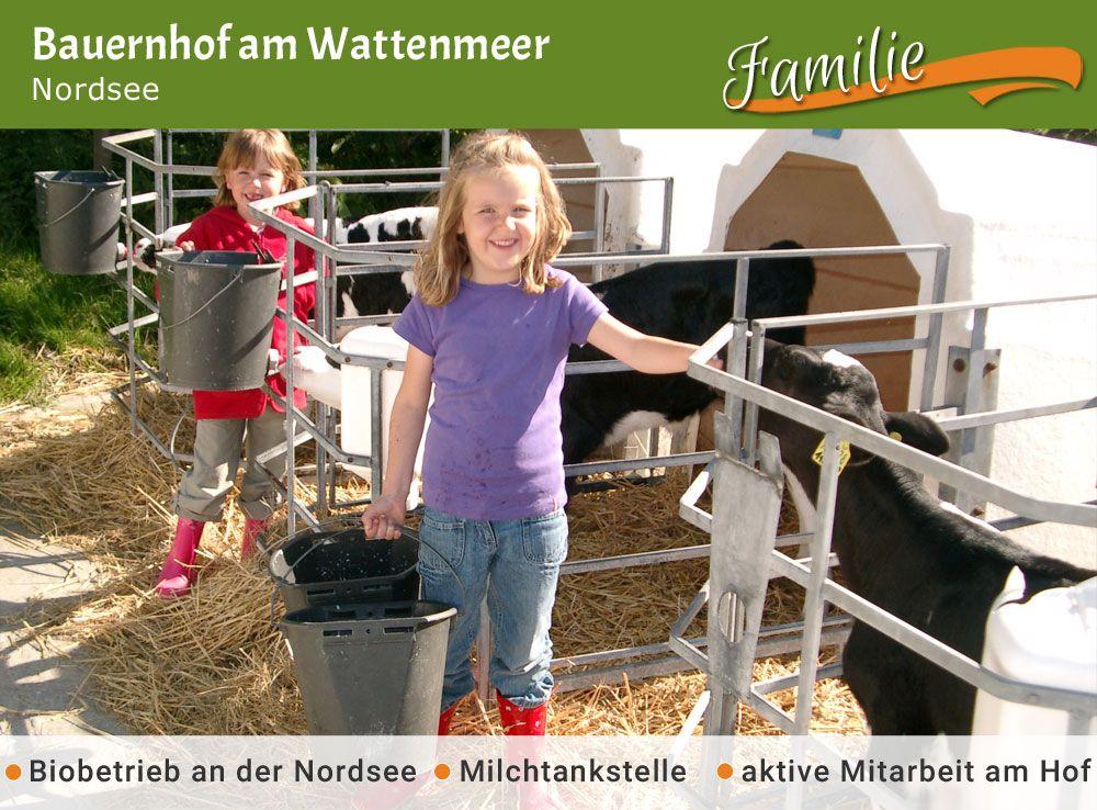 Bauernhof Am Wattenmeer Osterhever Bauernhofurlaub De Unterkunfte Wattenmeer Bauernhof Bauer