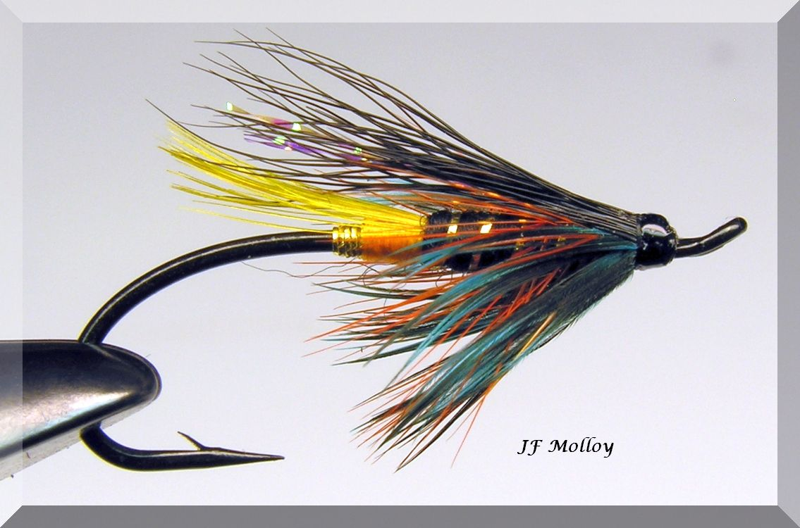 Pin by Jerome Molloy on Salmon Flies | Fly fishing flies ...