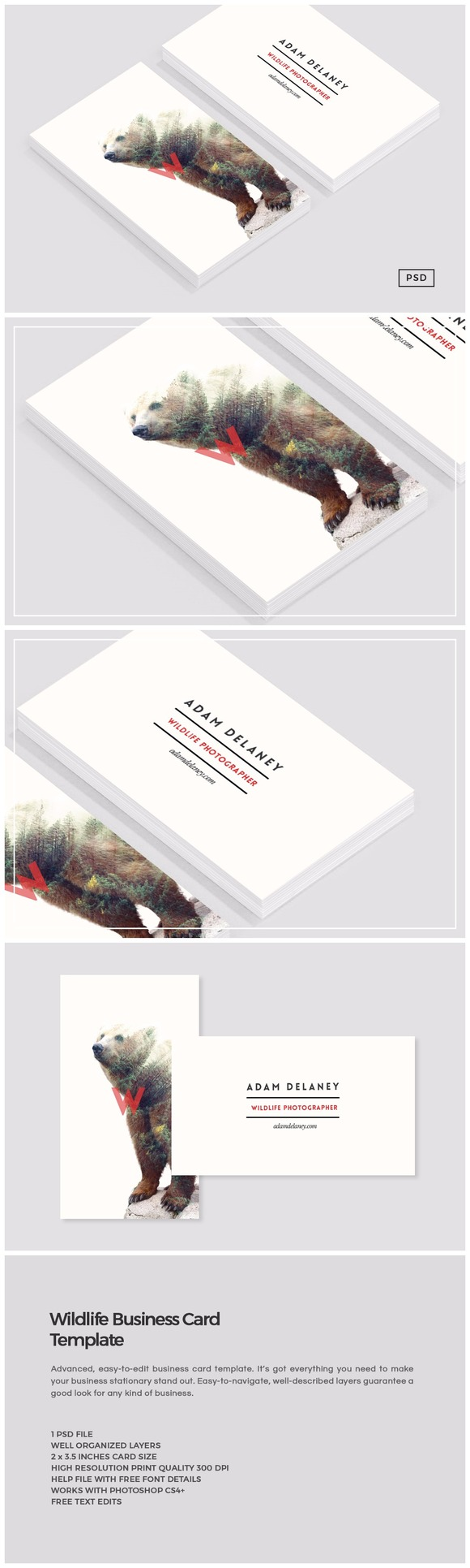 Wildlife Business Card Template By Design Co On Creativemarket