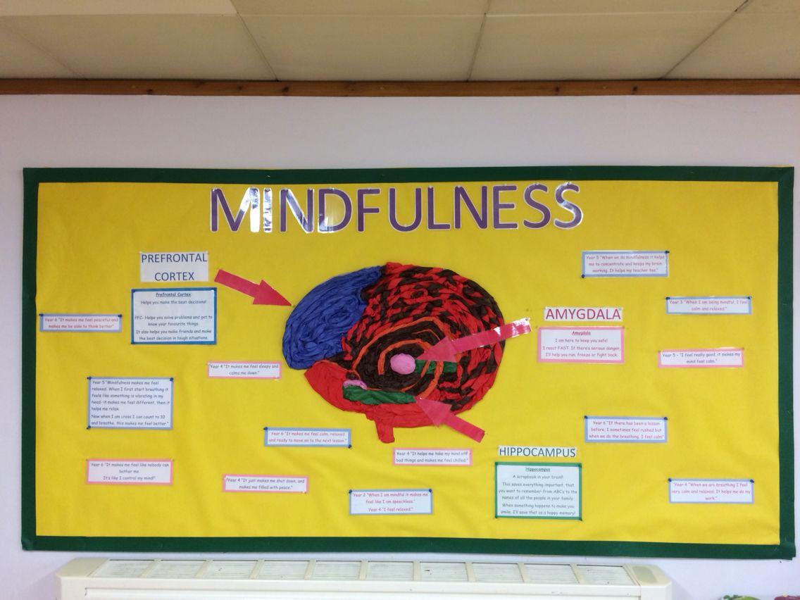 Mindfulness Display Board