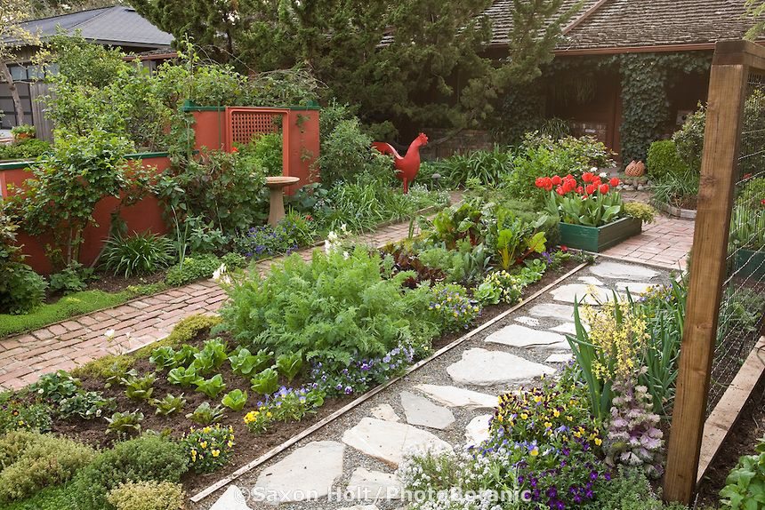 Ornamental edible garden mixed bed of herbs vegetables and flowers between paths in rosalind - Front yard vegetable garden ideas ...