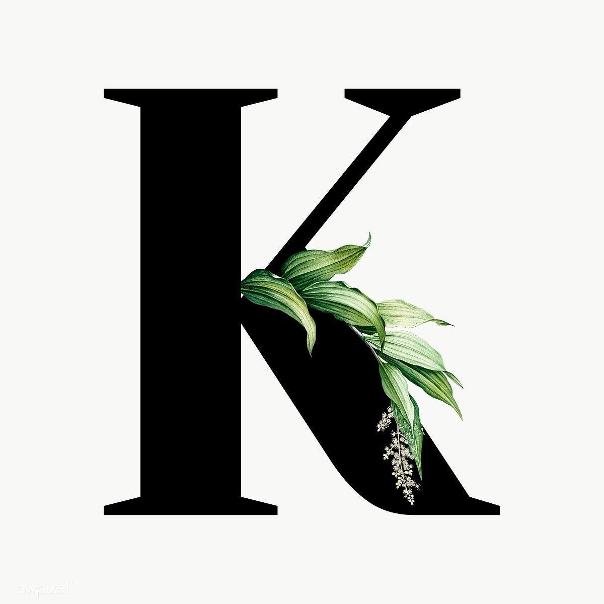 Download Premium Png Of Botanical Capital Letter K Transparent Png 584898 Floral Poster Floral Letters Lettering Alphabet