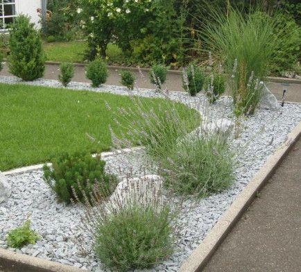 in einen kiesgarten sollten und pflanzen und größere steine,