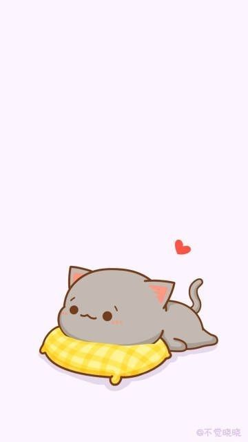 Fondo de pantalla gatito gris