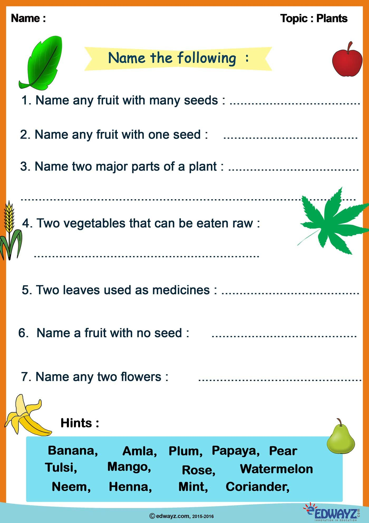 Evs Plants Worksheets Funlearning Evs Kids