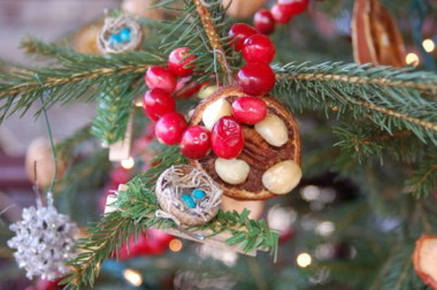 how to make a treat tree an outdoor christmas tree with decorations that sustain wildlife - Outdoor Christmas Tree Decorations For Birds