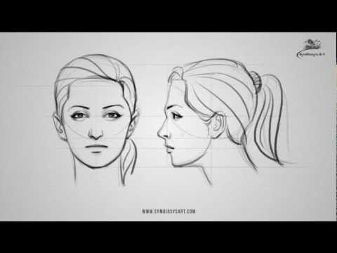How To Draw A Female Face Front And Side View Drawing Tutorial Read Full Article Http Webneel Com Video How D Face Drawing Side Face Drawing Face Profile