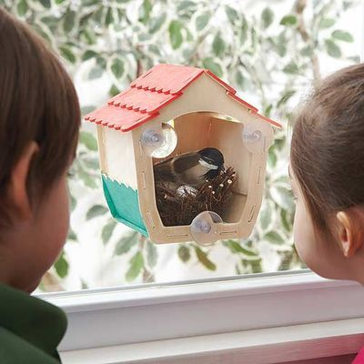 Kelly Johnston Want Window Birdhouse Bird Houses Diy Bird House
