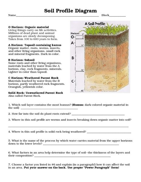 Soil profile diagram 8th 10th grade worksheet lesson pla for Soil questions