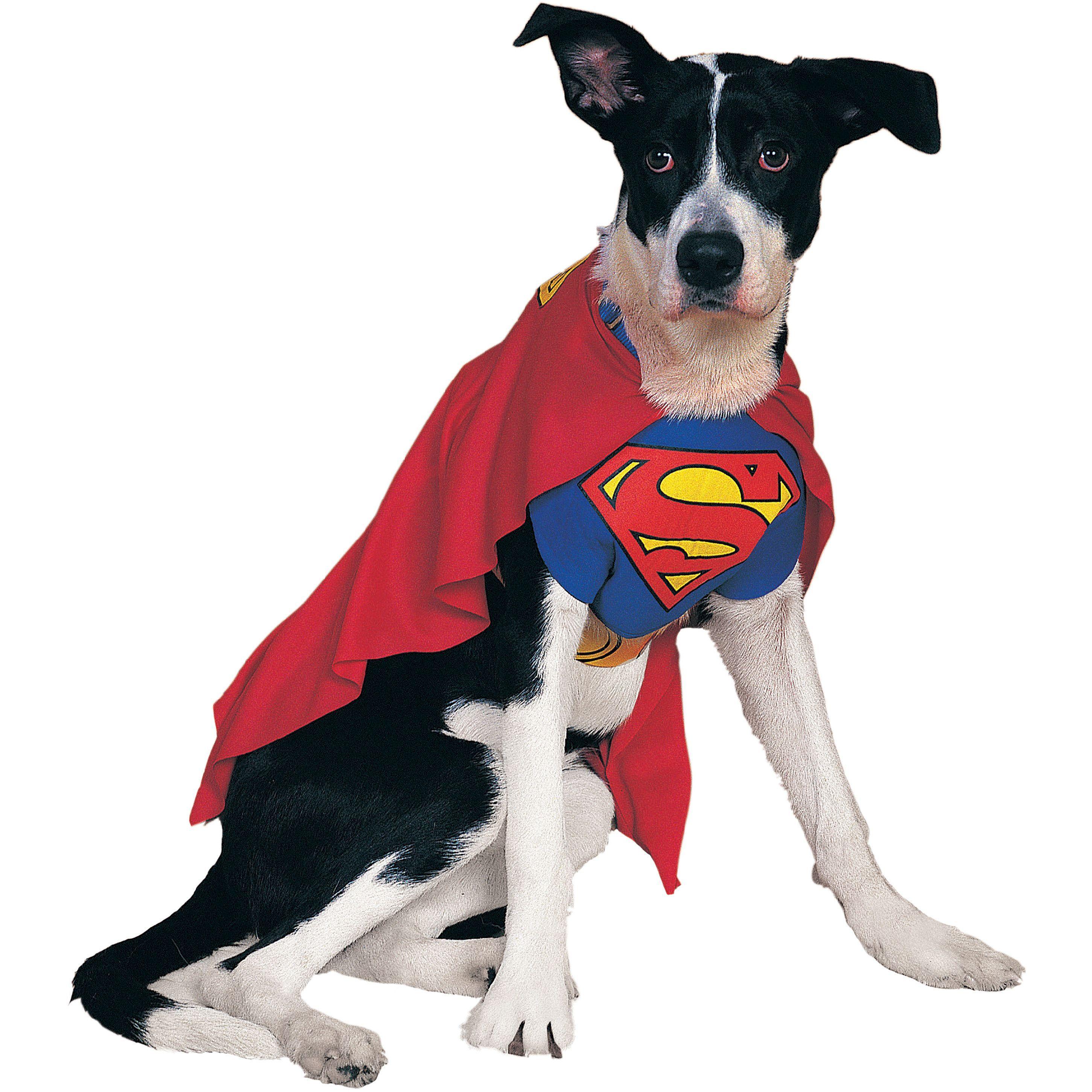 Rubieu0027s Superman Pet Costume-Extra Large - extra large  sc 1 st  Pinterest & Rubieu0027s Superman Pet Costume-Extra Large - extra large | Pet ...
