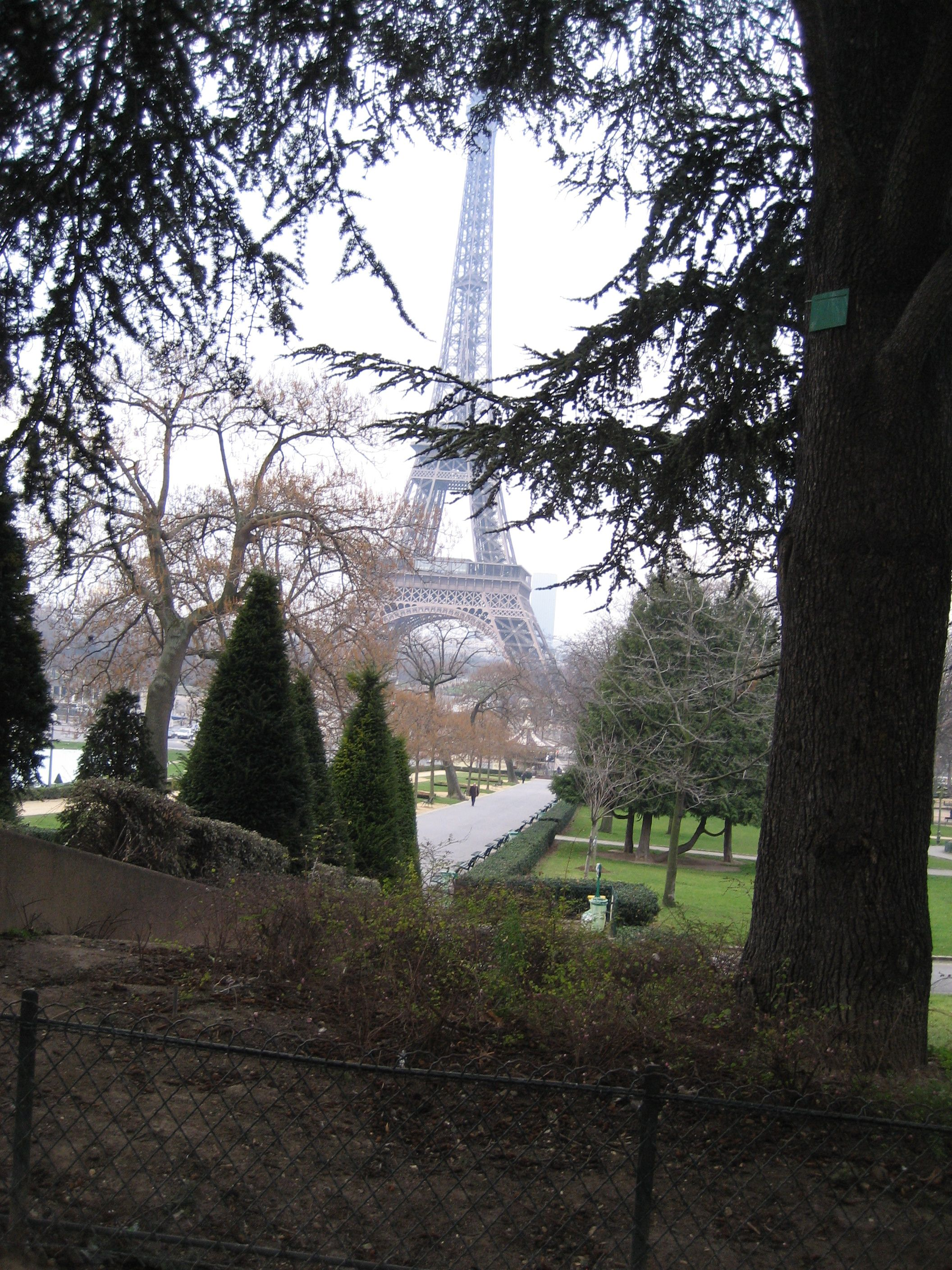 View from the park near the cinematique