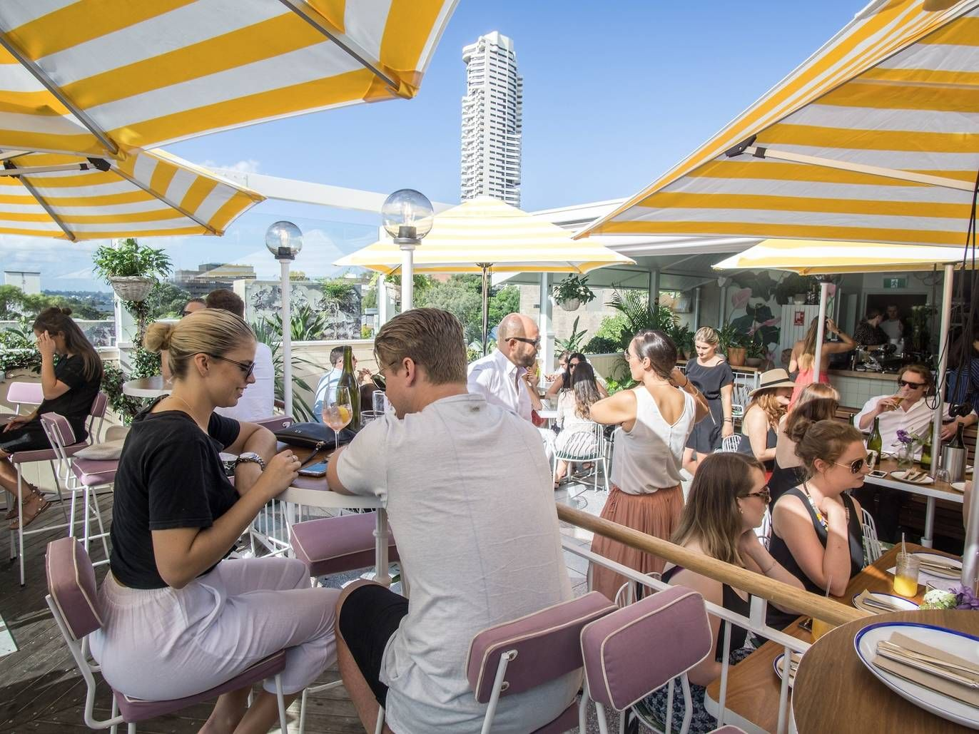 Sydney bar and pub reviews   Best rooftop bars, Rooftop ...