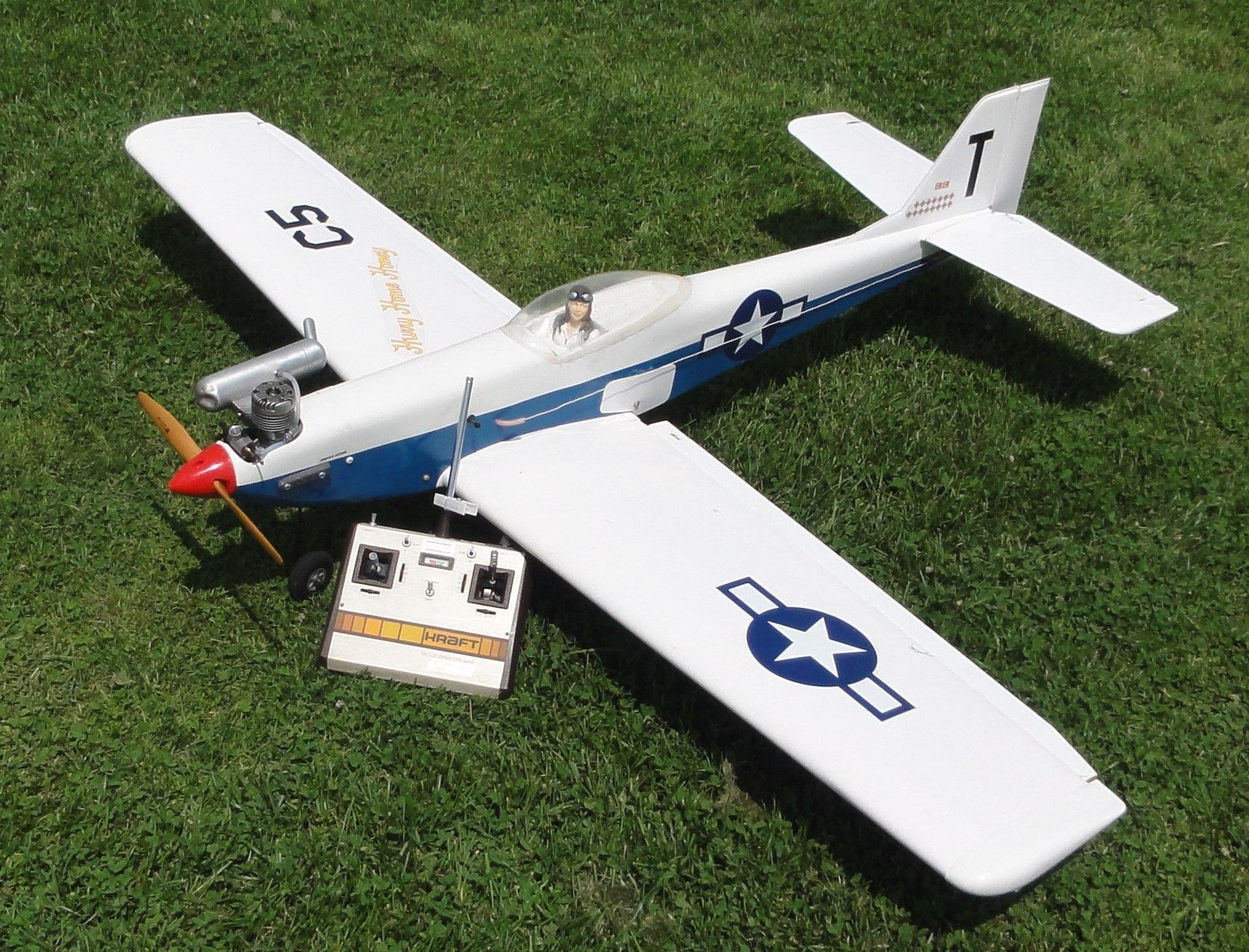 Top 6 Biggest RC Airplanes In The World #aircraft #