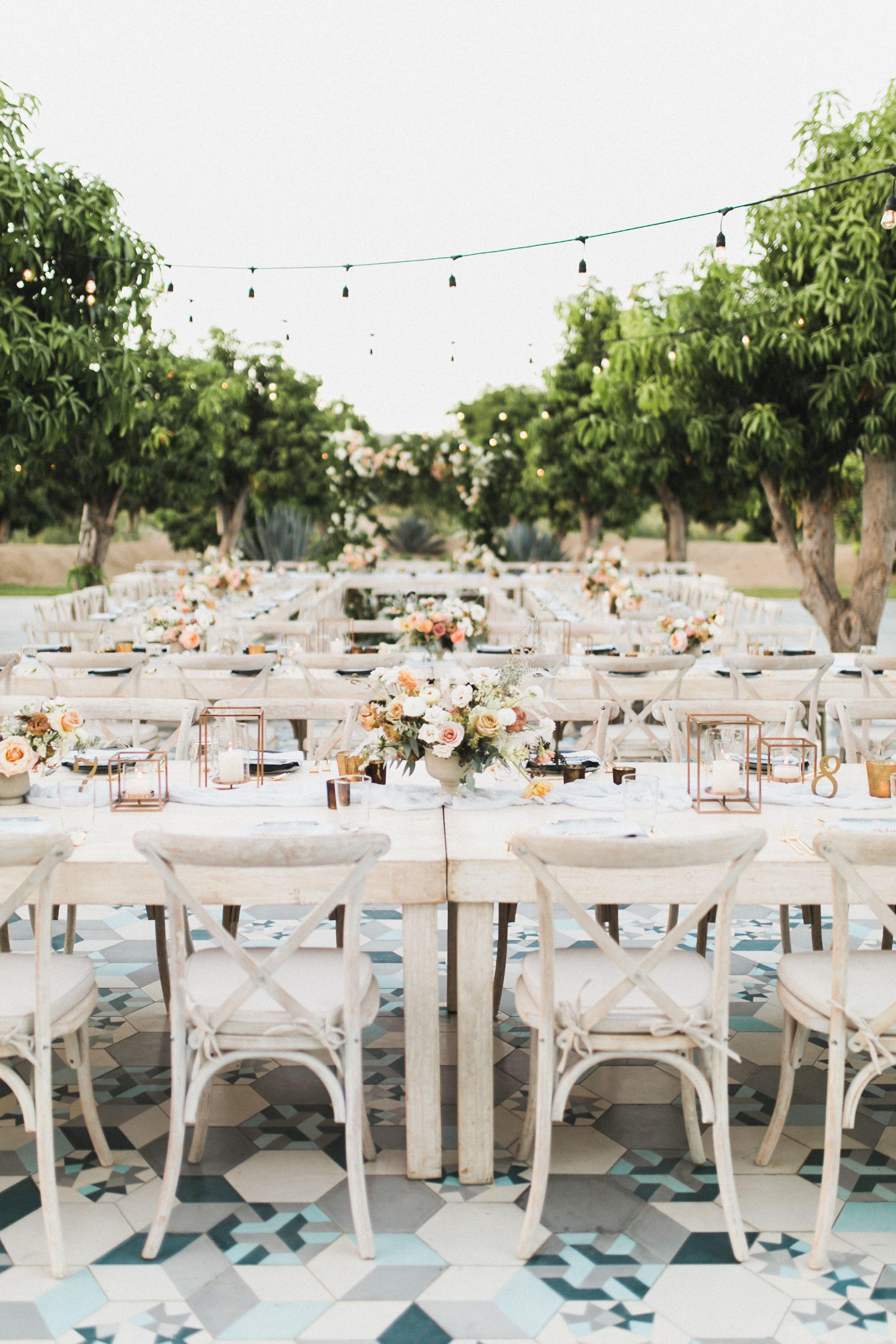 Karina Darren Amy Abbott Events Cabo Wedding Wedding