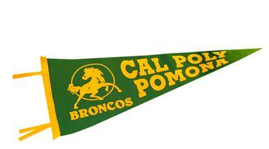 Cal Poly Pomona Pennant 12X30 Part 88