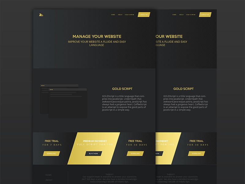 GOLD SCRIPT Website Design  by Ahmed Esmili