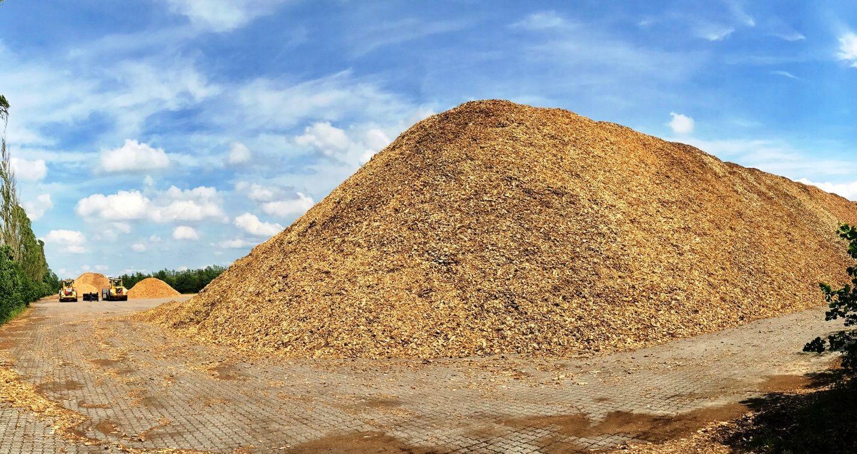 Dinamarca es un país comprometido con la biomasa, el biogás y las renovables   Expobiomasa.com
