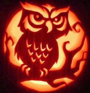 halloween pumpkin template owl  Pumpkin Carving Ideas   Owl pumpkin carving, Pumpkin carving ...