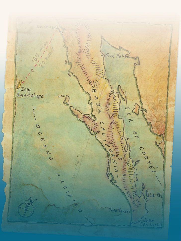 San Jose Calif Map%0A Baja California u    s Best Hotels Vacation Rentals Restaurants Events  Activities Blogs Tours Maps