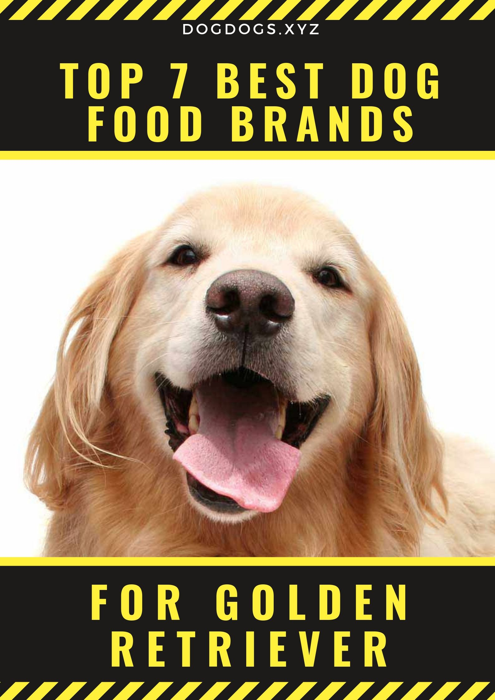 The Ingredients And Nutrition Facts Utilized By Those Best Dog