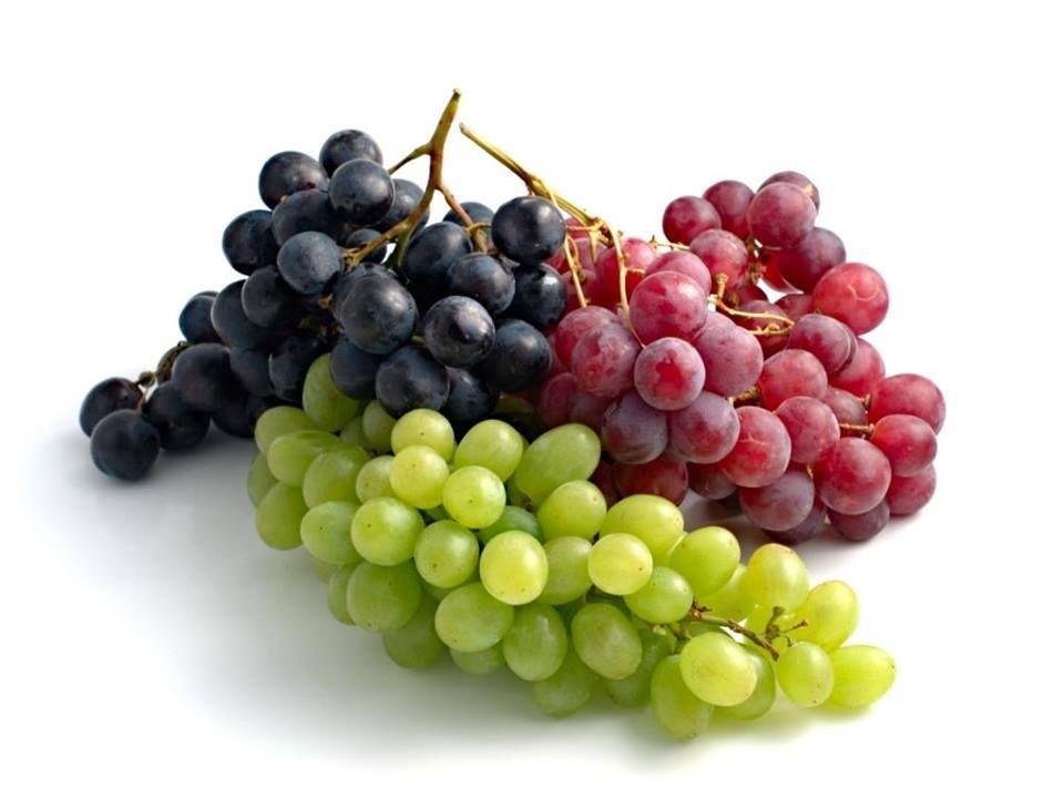 شوف صور جديده صوره قطع العنب Uvas Alimentos Fruta Uva