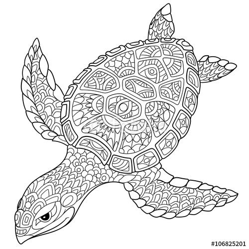 Zentangle Turtle Adult Antistress Coloring Page Turtle Coloring