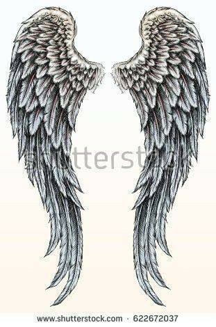 Angelwings drawing for a tattoo