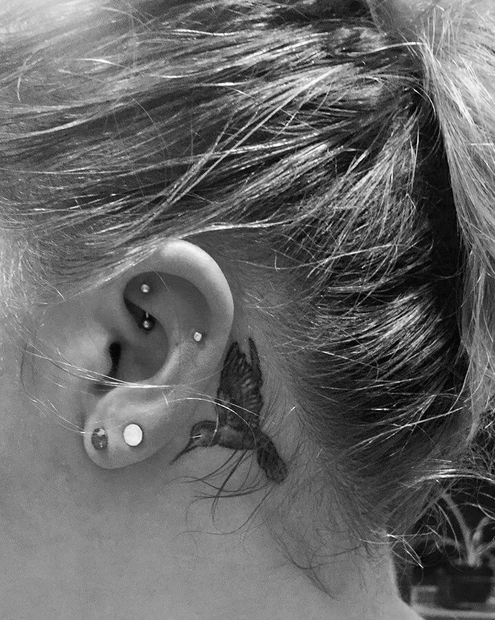 Rook & helix piercings. Behind ear tattoo. Hummingbird