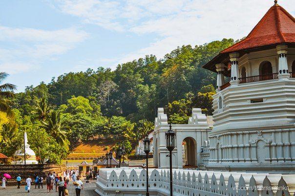 #канди #храм #храмзубабудды #будда #буддизм #история #шриланка #цейлон #горы #юнеско #природа #путешествия #памятник #туры #экскурсии #unesco #kandy #toothtemple #sacred #temple #buddha #buddism #lake #mountain #nature #ceylon #srilanka #tours #trip #travel