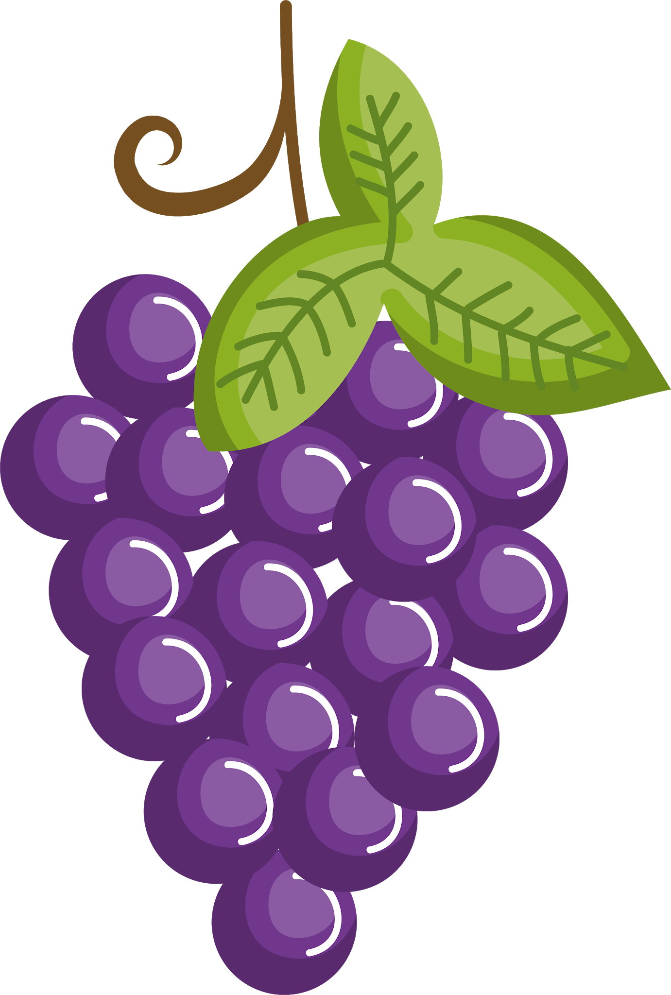 Pin by pngsector on Grape Image & Grape Clip art