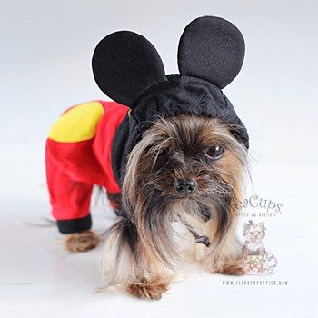Dog Costumes Mickey Mouse Halloween Costume For Small Dogs Dog