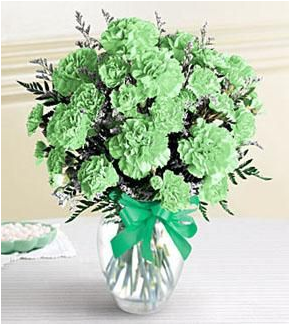 St. Patrick's Day Green Carnations