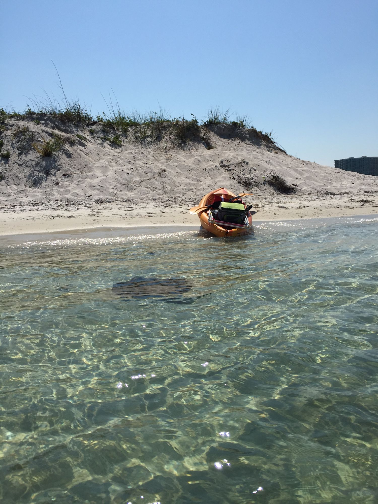 Bird Island / Walker Island Orange Beach, AL