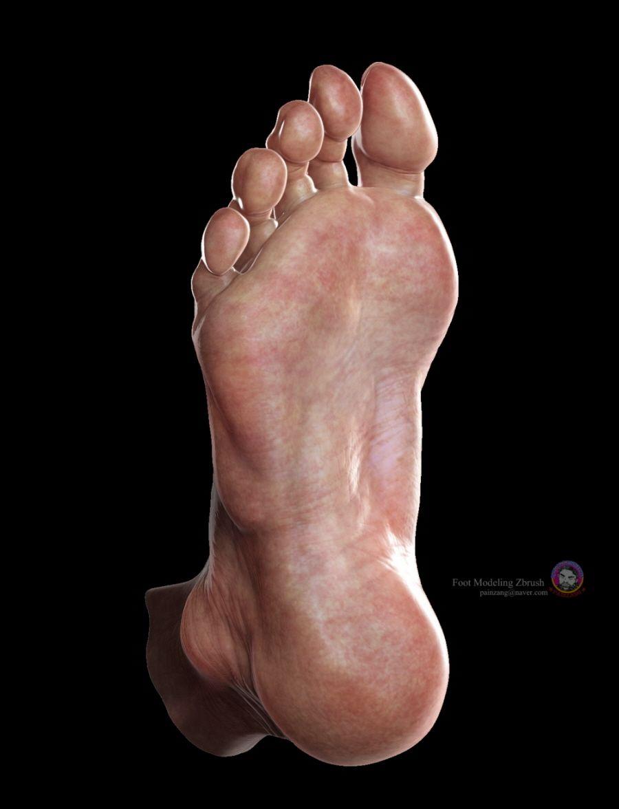 human anatomy~skin by zbrush | Anatomy | Pinterest