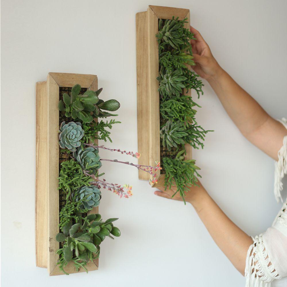 Cuadro vivo 45x15 cm kentia decosustentable jardin - Cuadro jardin vertical ...