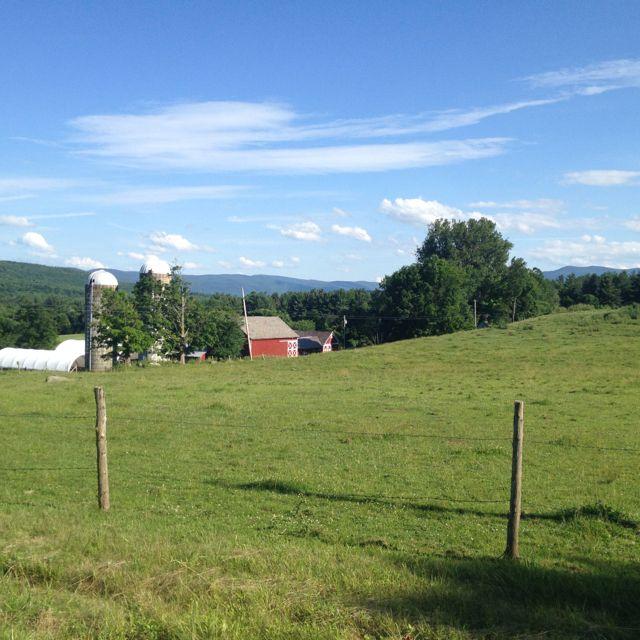 My neighbors Dairy Farm