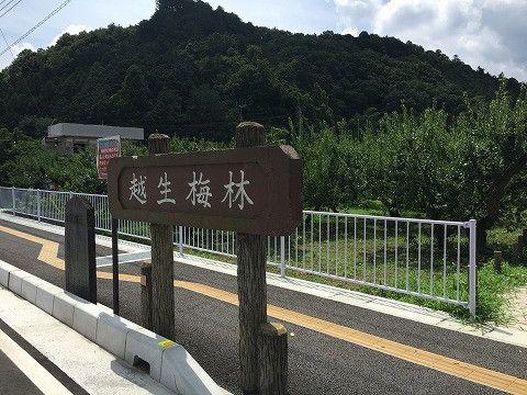 3回目の更新です。 よく分からないと思いますが神奈川県の大和で髪の毛を切っていただいた後に埼玉県の越生(おごせ、と読みます)に移動してきました。↑当たり前です…
