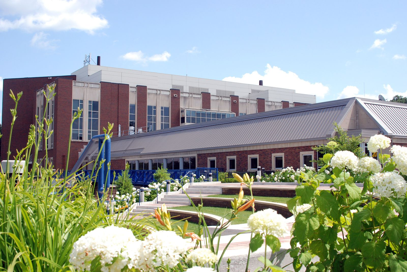 Ampitheater looking at Health Sciences Higher education